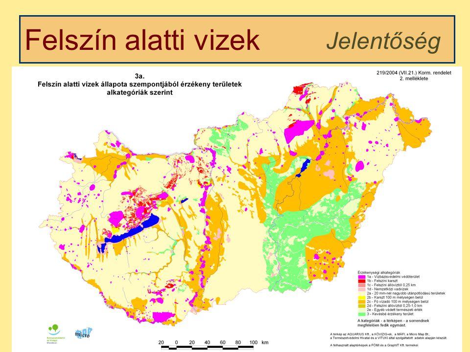 Felszín alatti vizek Víztartó jellege, helyzete alapján Osztályozás Telített zóna Telítetlen zóna