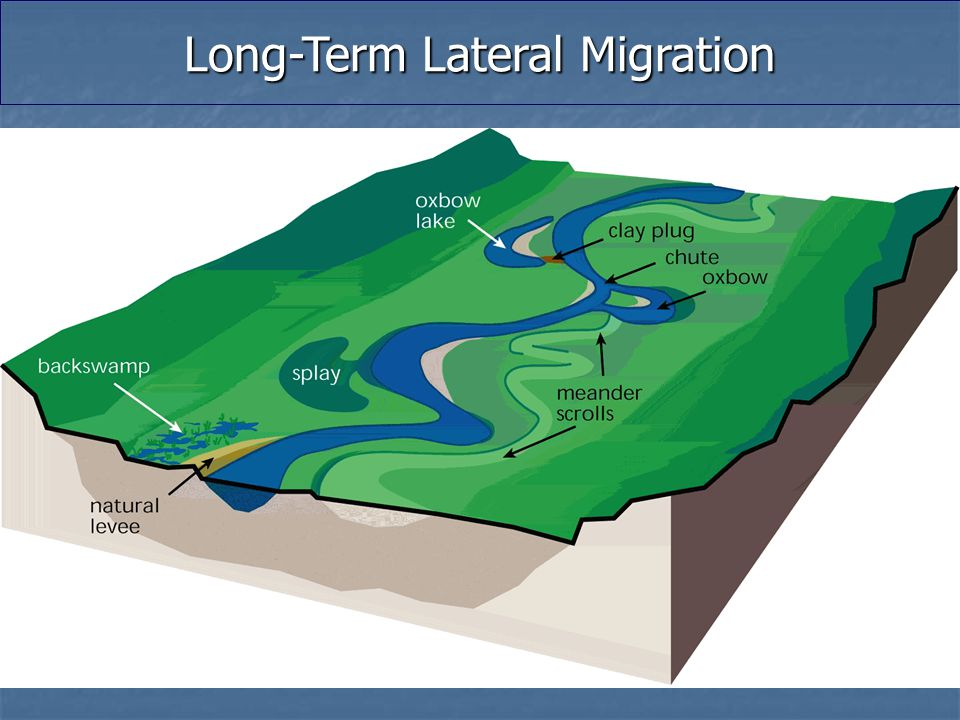 Long-Term Lateral Migration