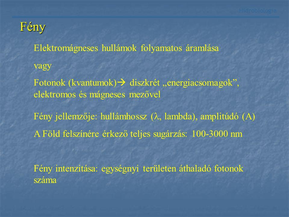 Fény Hidrobiológia Fény jellemzője: hullámhossz (, lambda), amplitúdó (A) A Föld felszínére érkező teljes sugárzás: 100-3000 nm Fény intenzitása: egys