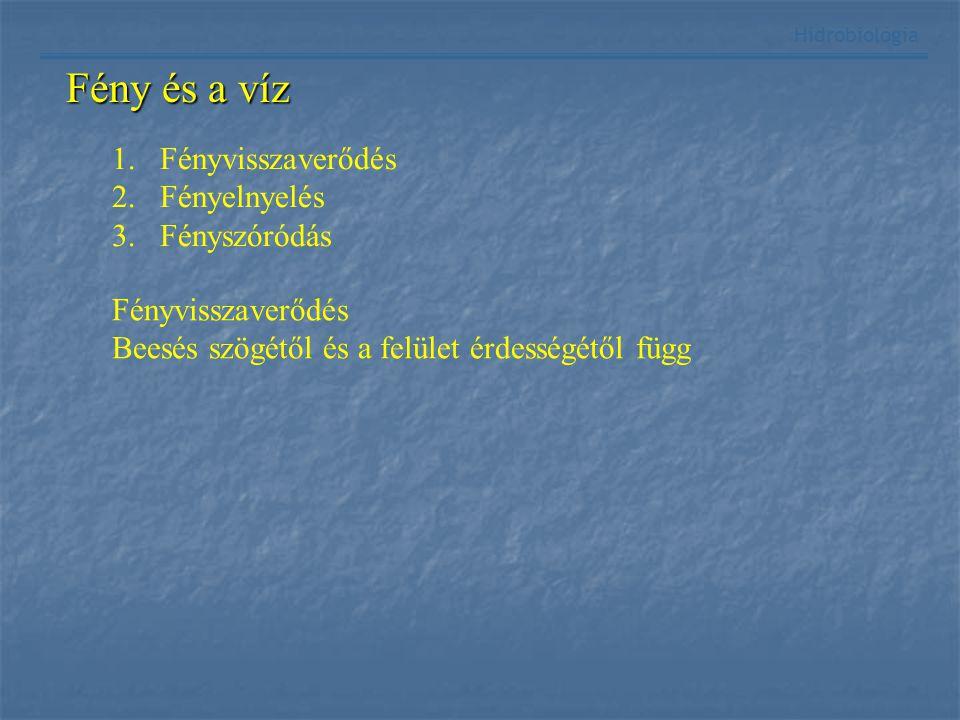 Hidrobiológia Fény és a víz 1.Fényvisszaverődés 2.Fényelnyelés 3.Fényszóródás Fényvisszaverődés Beesés szögétől és a felület érdességétől függ