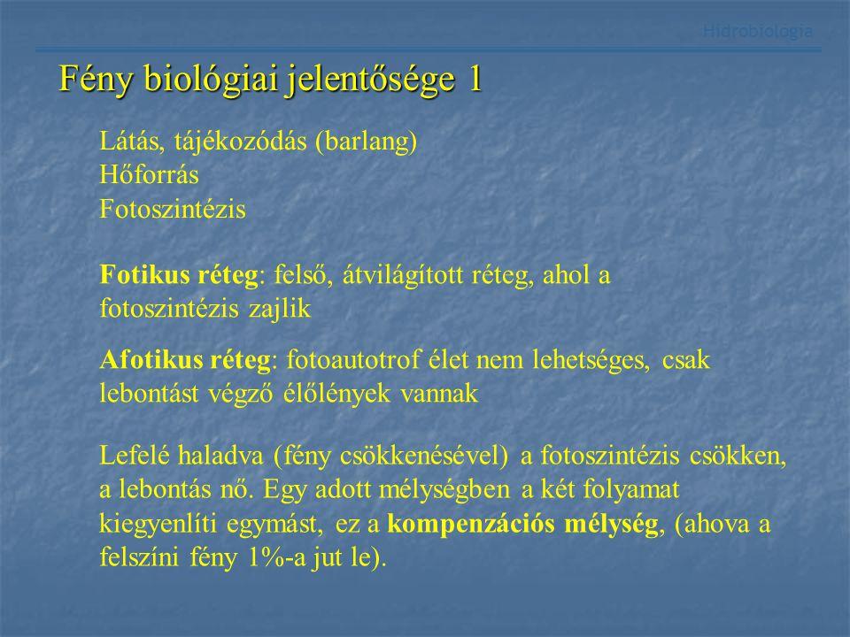 Fény biológiai jelentősége 1 Hidrobiológia Látás, tájékozódás (barlang) Hőforrás Fotoszintézis Fotikus réteg: felső, átvilágított réteg, ahol a fotosz