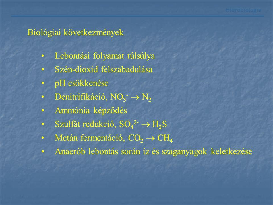 Hidrobiológia Biológiai következmények Lebontási folyamat túlsúlya Szén-dioxid felszabadulása pH csökkenése Denitrifikáció, NO 3 -  N 2 Ammónia képző