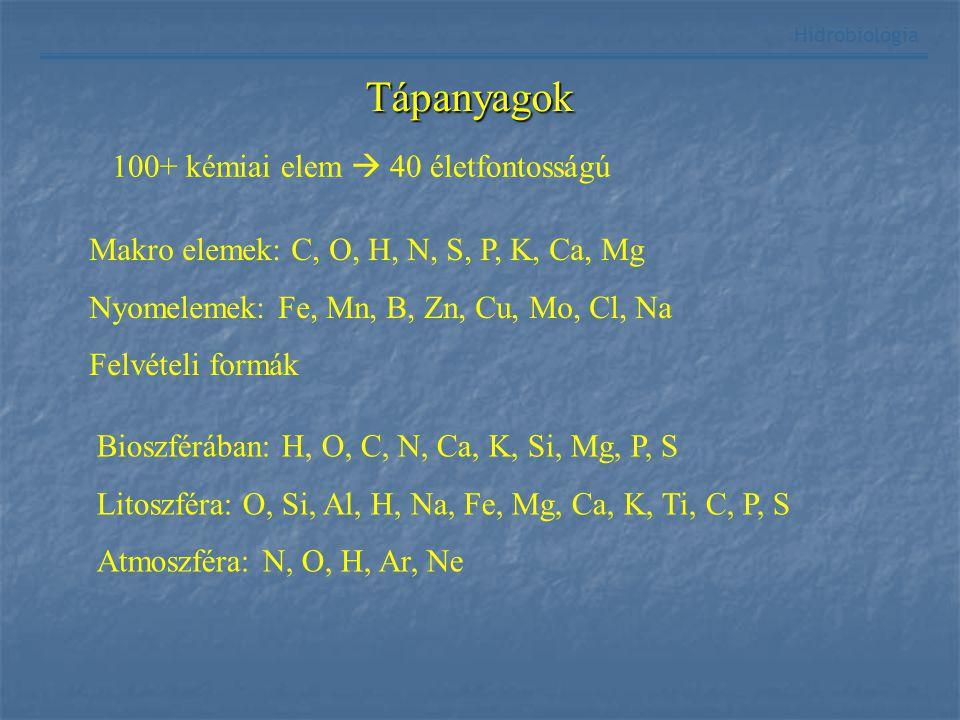 Hidrobiológia Tápanyagok 100+ kémiai elem  40 életfontosságú Makro elemek: C, O, H, N, S, P, K, Ca, Mg Nyomelemek: Fe, Mn, B, Zn, Cu, Mo, Cl, Na Felv