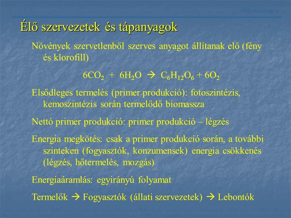 Hidrobiológia Növények szervetlenből szerves anyagot állítanak elő (fény és klorofill) 6CO 2 + 6H 2 O  C 6 H 12 O 6 + 6O 2 Elsődleges termelés (prime