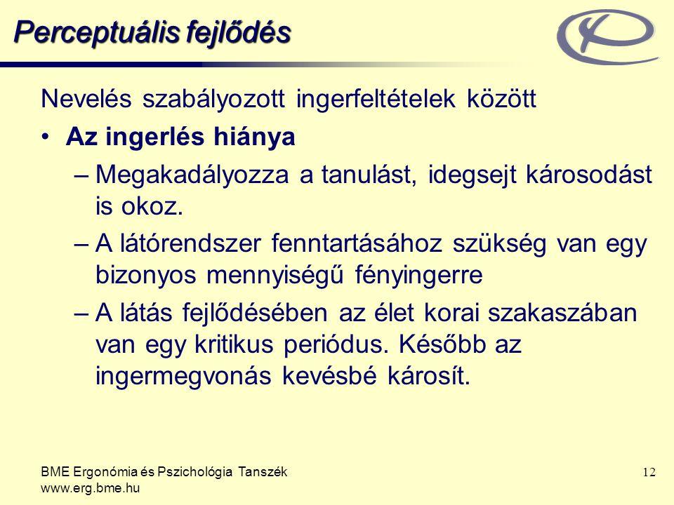 BME Ergonómia és Pszichológia Tanszék www.erg.bme.hu 12 Perceptuális fejlődés Nevelés szabályozott ingerfeltételek között Az ingerlés hiánya –Megakadá