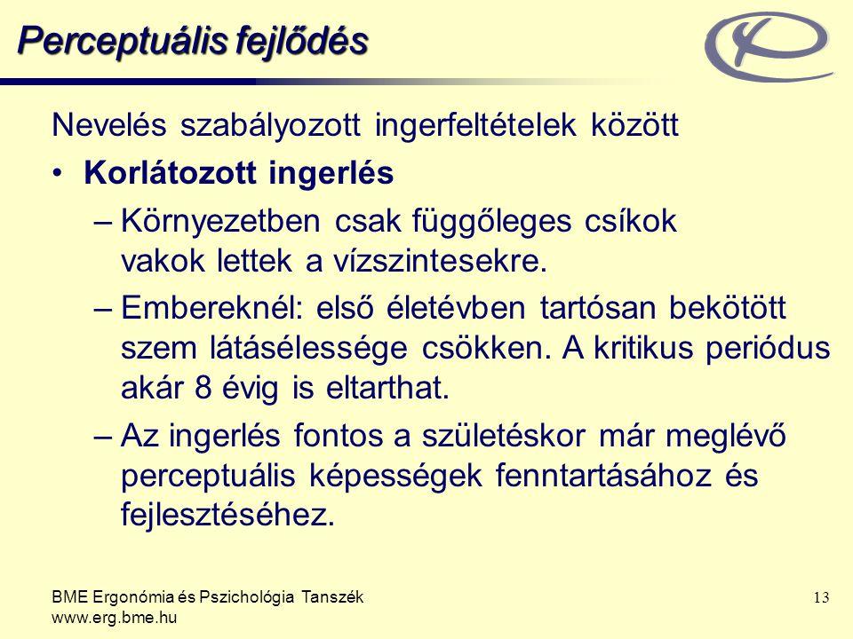 BME Ergonómia és Pszichológia Tanszék www.erg.bme.hu 13 Perceptuális fejlődés Nevelés szabályozott ingerfeltételek között Korlátozott ingerlés –Környe
