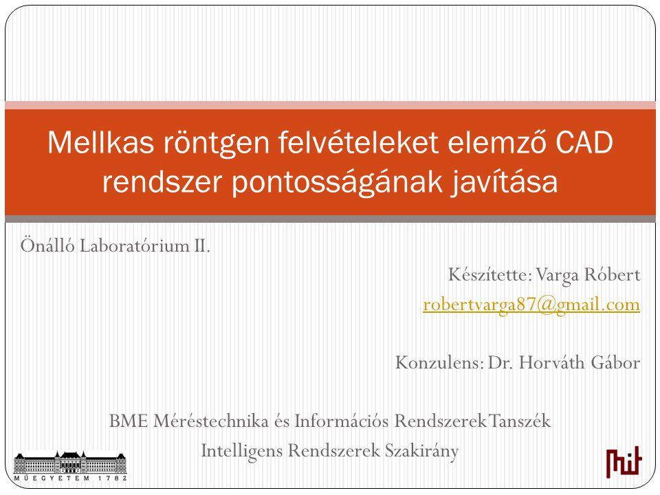 Mellkas röntgen felvételeket elemző CAD rendszer pontosságának javítása Önálló Laboratórium II. Készítette: Varga Róbert robertvarga87@gmail.com Konzu