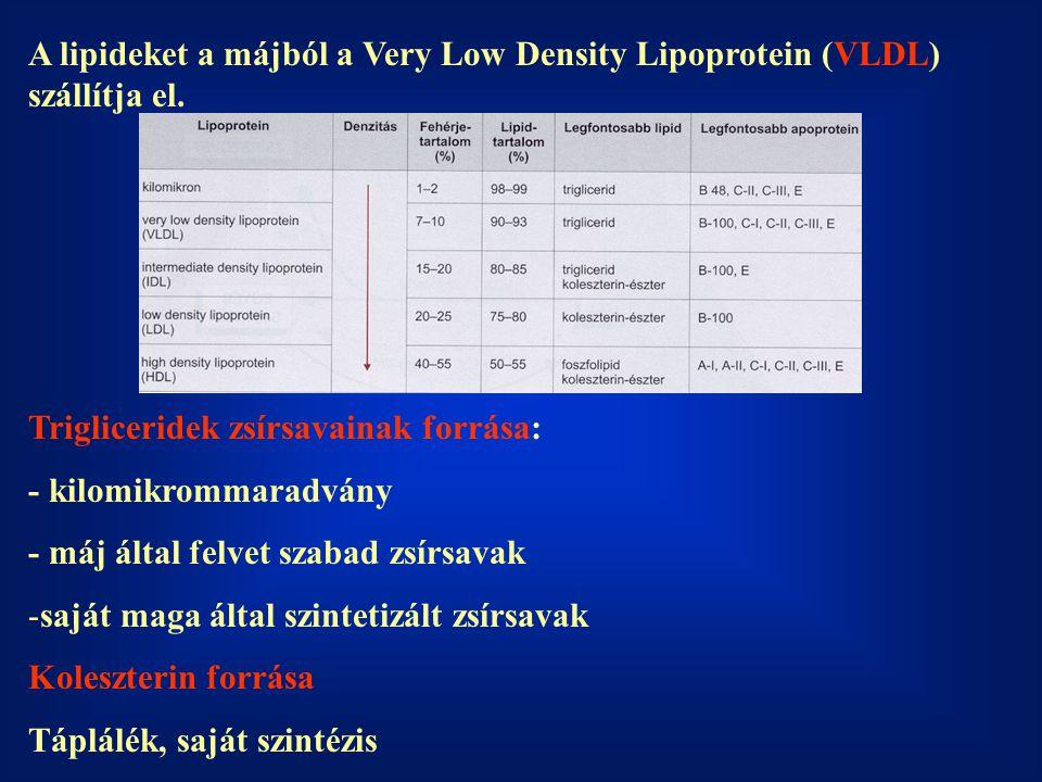 A lipideket a májból a Very Low Density Lipoprotein (VLDL) szállítja el. Trigliceridek zsírsavainak forrása: - kilomikrommaradvány - máj által felvet