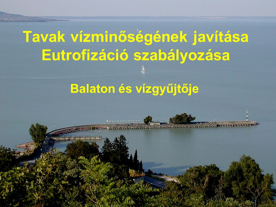 Tavak vízminőségének javítása Eutrofizáció szabályozása Balaton és vízgyűjtője