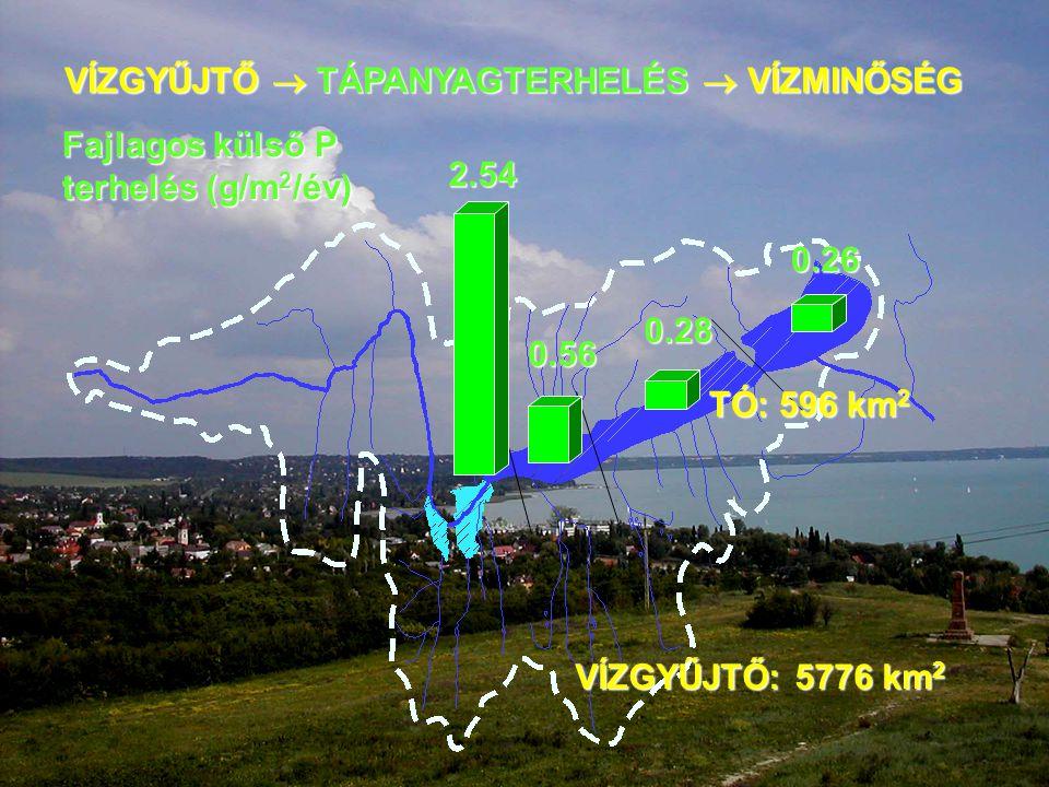 VÍZGYŰJTŐ: 5776 km 2 TÓ: 596 km 2 VÍZGYŰJTŐ  TÁPANYAGTERHELÉS  VÍZMINŐSÉG 2.54 0.26 Fajlagos külső P terhelés (g/m 2 /év) 0.28 0.56
