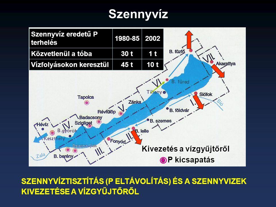 SZENNYVÍZTISZTÍTÁS (P ELTÁVOLÍTÁS) ÉS A SZENNYVIZEK KIVEZETÉSE A VÍZGYŰJTŐRŐL Kivezetés a vízgyűjtőről P kicsapatás Szennyvíz eredetű P terhelés 1980-852002 Közvetlenül a tóba30 t1 t Vízfolyásokon keresztül45 t10 t Szennyvíz