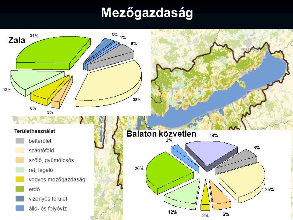 Zala Balaton közvetlen Mezőgazdaság