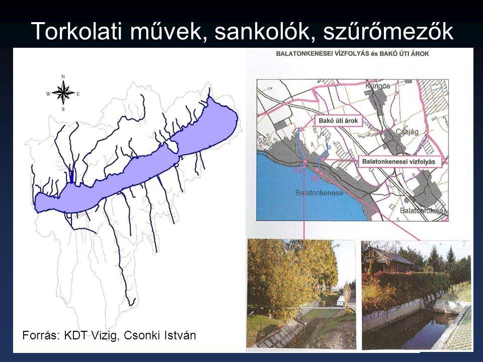 Torkolati művek, sankolók, szűrőmezők Forrás: KDT Vizig, Csonki István