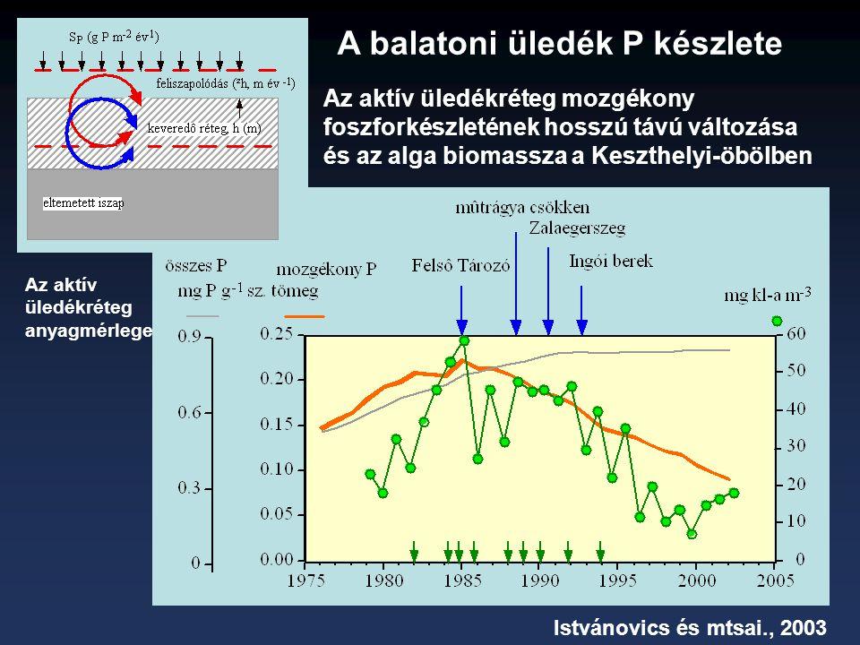 Az aktív üledékréteg mozgékony foszforkészletének hosszú távú változása és az alga biomassza a Keszthelyi-öbölben Istvánovics és mtsai., 2003 A balatoni üledék P készlete Az aktív üledékréteg anyagmérlege