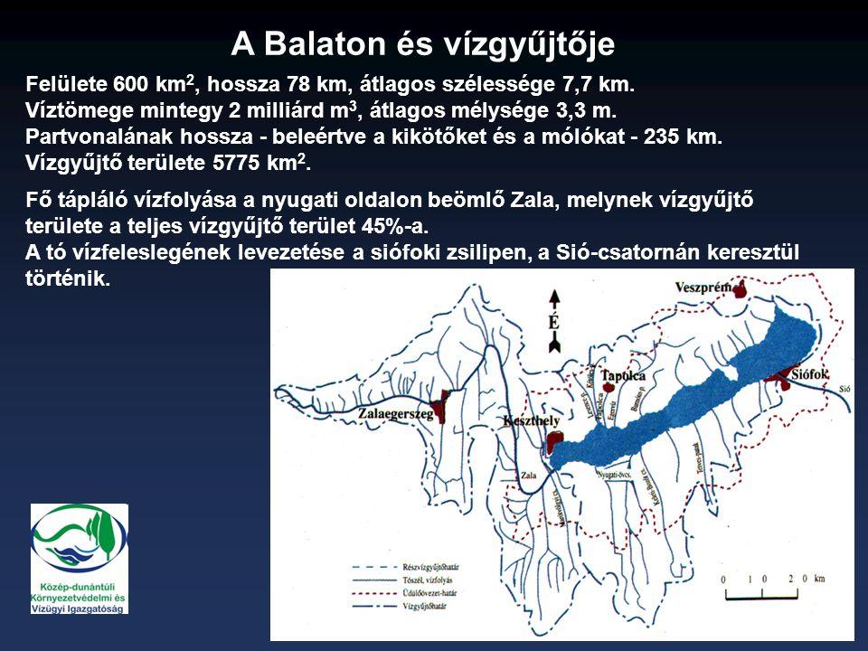 Felülete 600 km 2, hossza 78 km, átlagos szélessége 7,7 km.