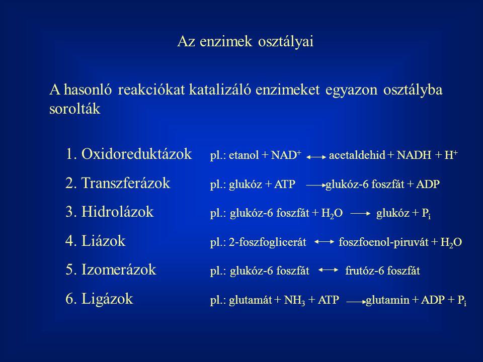 1.Oxidoreduktázok pl.: etanol + NAD + acetaldehid + NADH + H + 2.