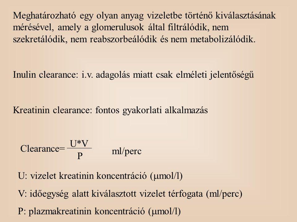 Meghatározható egy olyan anyag vizeletbe történő kiválasztásának mérésével, amely a glomerulusok által filtrálódik, nem szekretálódik, nem reabszorbeá