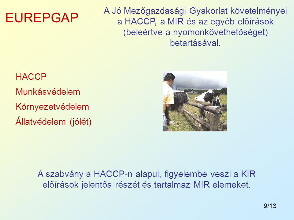 9/13 A Jó Mezőgazdasági Gyakorlat követelményei a HACCP, a MIR és az egyéb előírások (beleértve a nyomonkövethetőséget) betartásával. EUREPGAP HACCP M