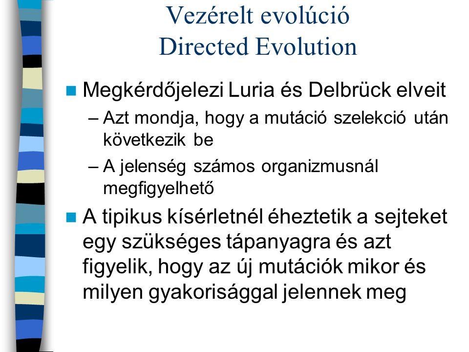 Vezérelt evolúció Directed Evolution Megkérdőjelezi Luria és Delbrück elveit –Azt mondja, hogy a mutáció szelekció után következik be –A jelenség szám