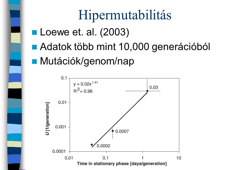 Hipermutabilitás Loewe et. al. (2003) Adatok több mint 10,000 generációból Mutációk/genom/nap