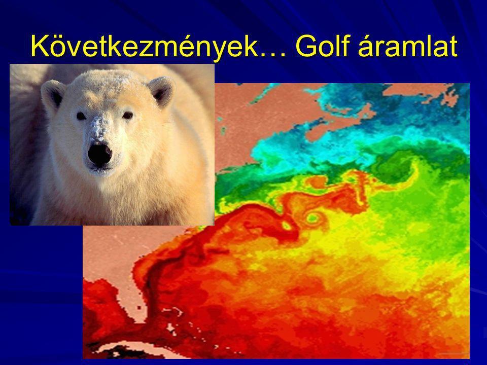 Következmények… Golf áramlat