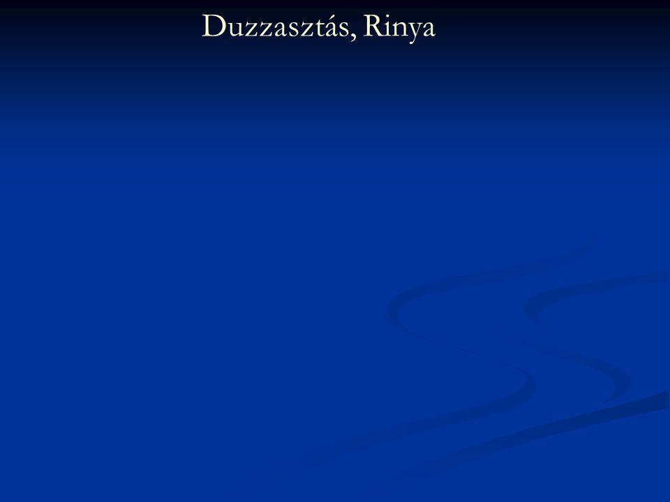 Duzzasztás, Rinya