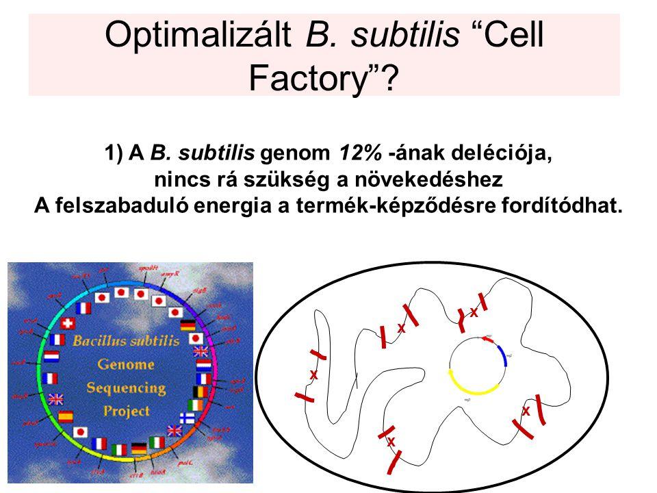 Optimalizált B.subtilis Cell Factory . 1)A B.