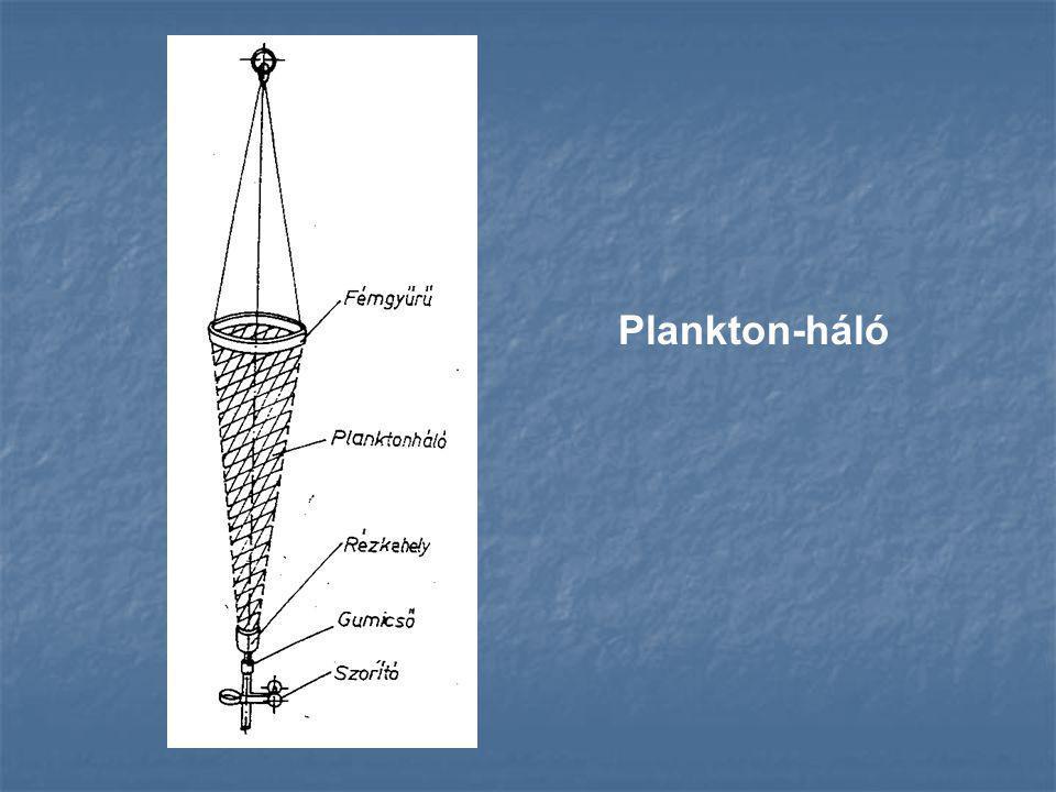 Plankton-háló
