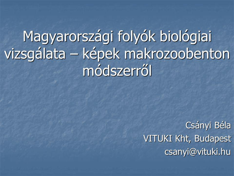 Magyarországi folyók biológiai vizsgálata – képek makrozoobenton módszerről Csányi Béla VITUKI Kht, Budapest csanyi@vituki.hu