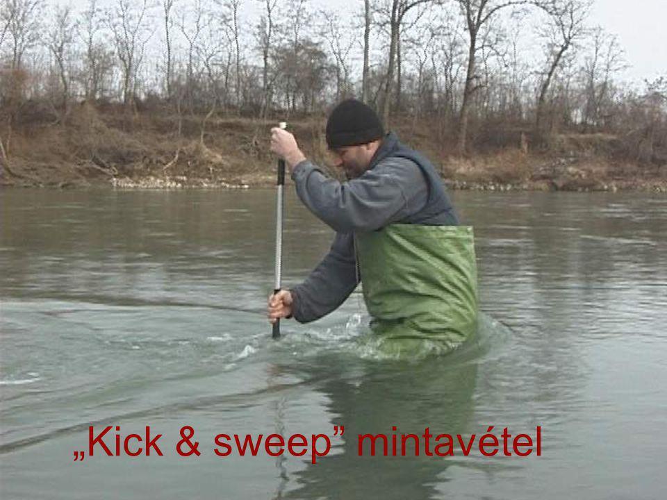 """""""Kick & sweep"""" mintavétel"""