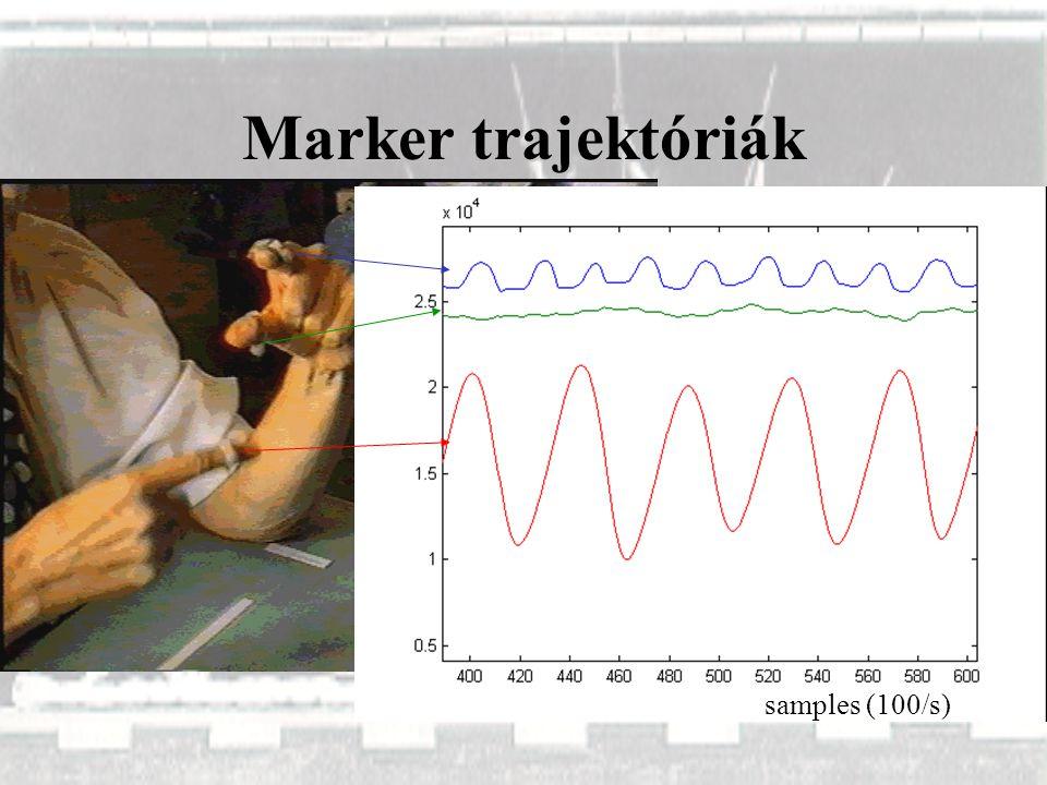 Marker trajektóriák samples (100/s)