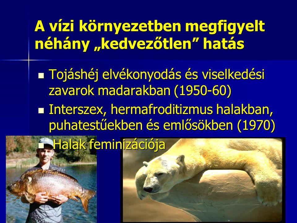 """A vízi környezetben megfigyelt néhány """"kedvezőtlen hatás Tojáshéj elvékonyodás és viselkedési zavarok madarakban (1950-60) Tojáshéj elvékonyodás és viselkedési zavarok madarakban (1950-60) Interszex, hermafroditizmus halakban, puhatestűekben és emlősökben (1970) Interszex, hermafroditizmus halakban, puhatestűekben és emlősökben (1970) Halak feminizációja Halak feminizációja"""