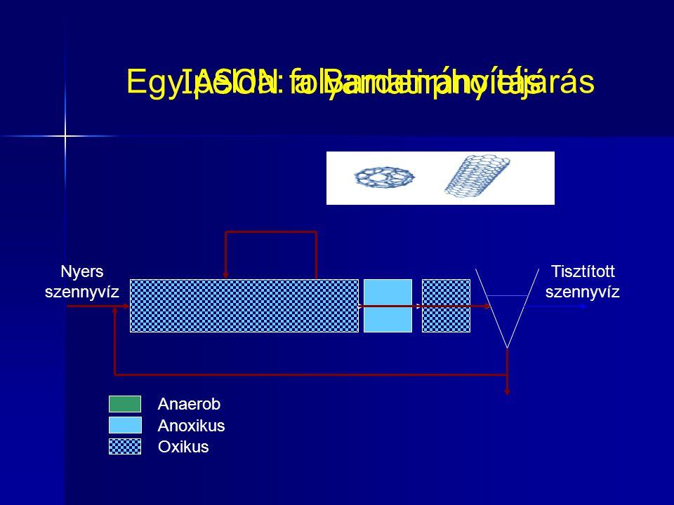 Egy példa: a Bardenpho eljárás Anaerob Anoxikus Oxikus Nyers szennyvíz Tisztított szennyvíz IASON folyamatirányítás