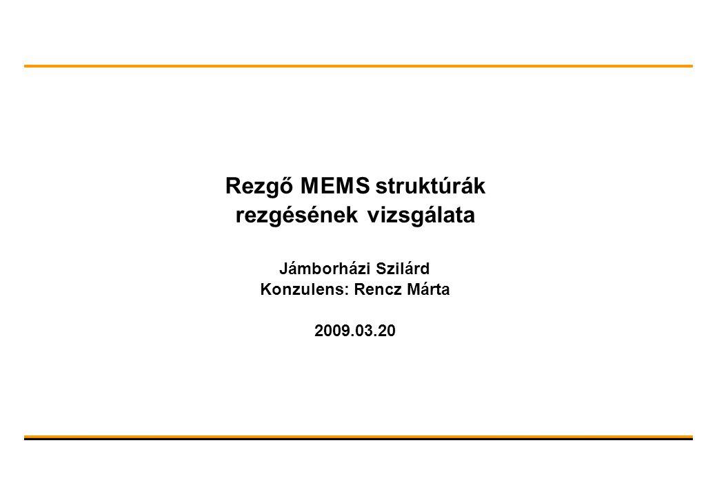 Rezgő MEMS struktúrák rezgésének vizsgálata Jámborházi Szilárd Konzulens: Rencz Márta 2009.03.20