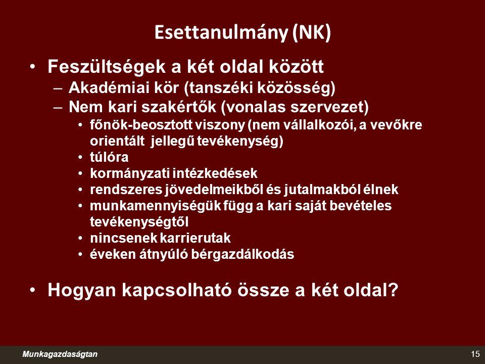 Esettanulmány (NK) Munkagazdaságtan15 Feszültségek a két oldal között –Akadémiai kör (tanszéki közösség) –Nem kari szakértők (vonalas szervezet) főnök