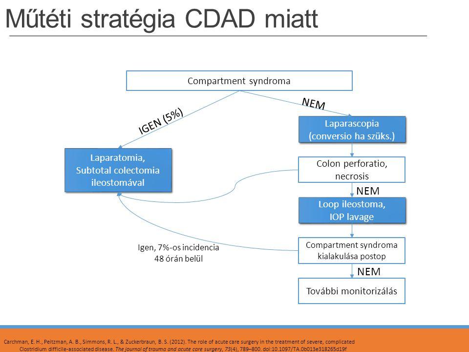 Műtéti stratégia CDAD miatt Compartment syndroma Laparascopia (conversio ha szüks.) Laparascopia (conversio ha szüks.) Colon perforatio, necrosis Loop