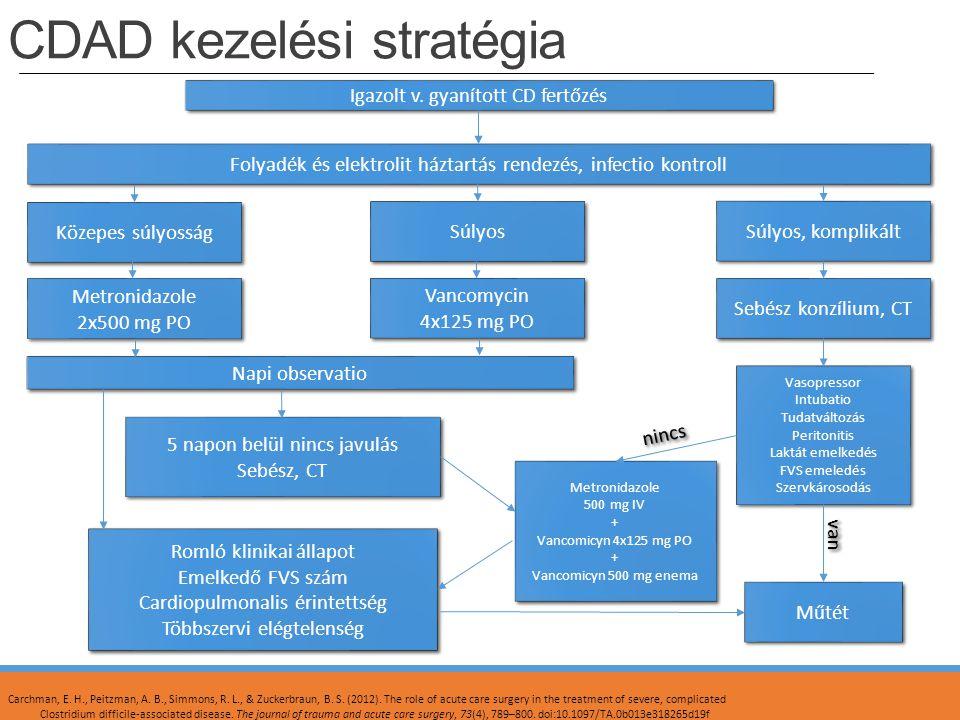 CDAD kezelési stratégia Igazolt v. gyanított CD fertőzés Folyadék és elektrolit háztartás rendezés, infectio kontroll Közepes súlyosság Súlyos Súlyos,