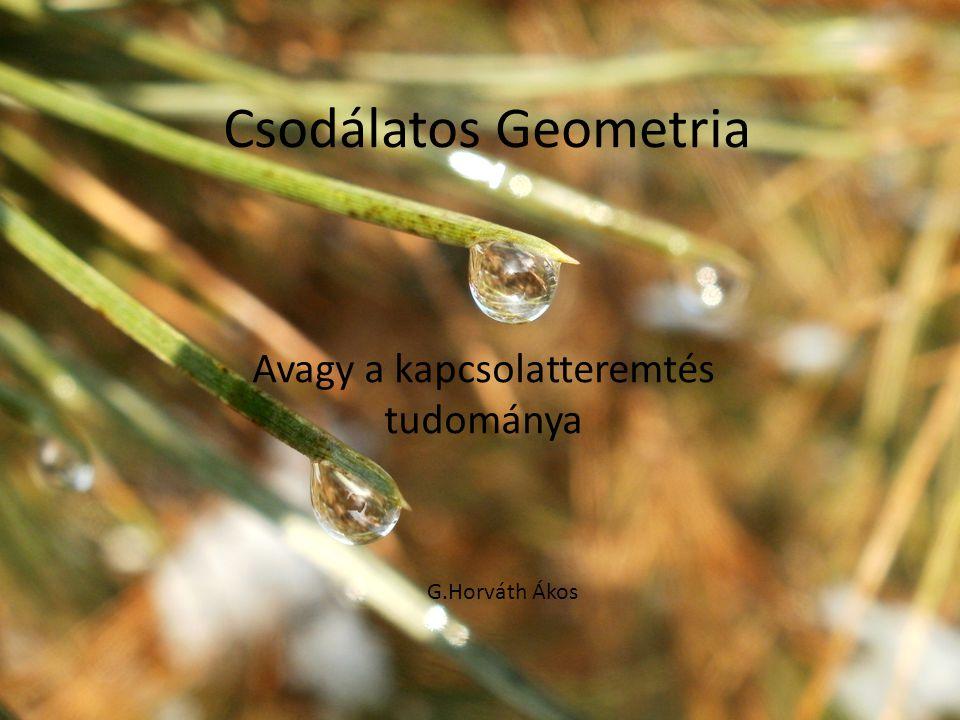 Csodálatos Geometria Avagy a kapcsolatteremtés tudománya G.Horváth Ákos