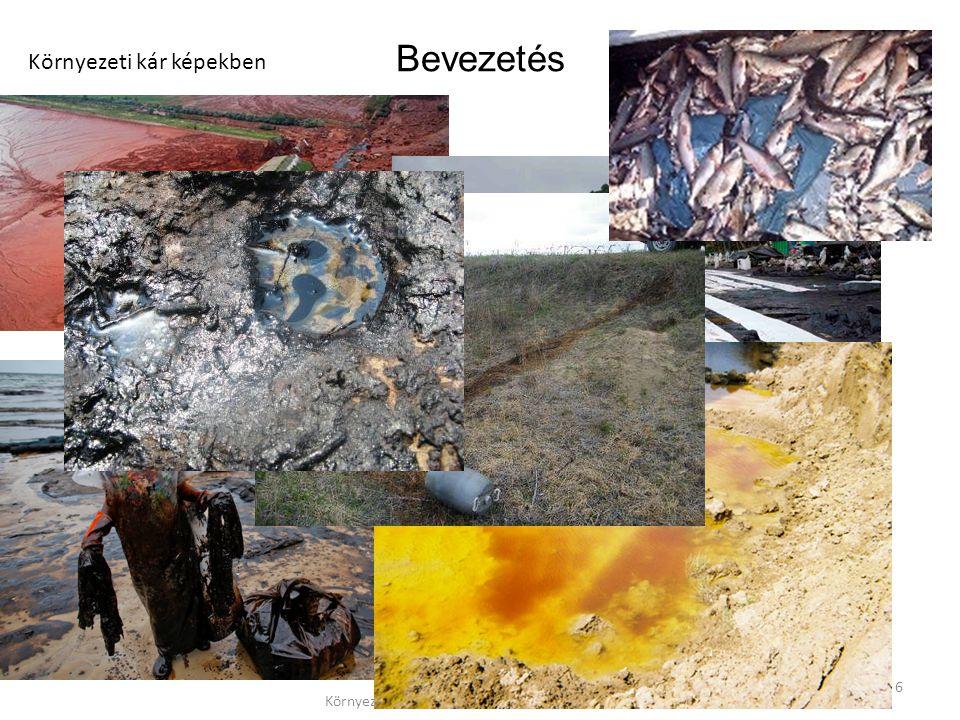 Környezeti Kárelhárítás - 1 EA - Jolánkai Zsolt 7 Bevezetés Környezeti kárt okozó tevékenység kárelhárításkármentesítés Rendkívüli szennyezés Nem rendkívüli szennyezés Balesetjellegű szennyezés Pl.