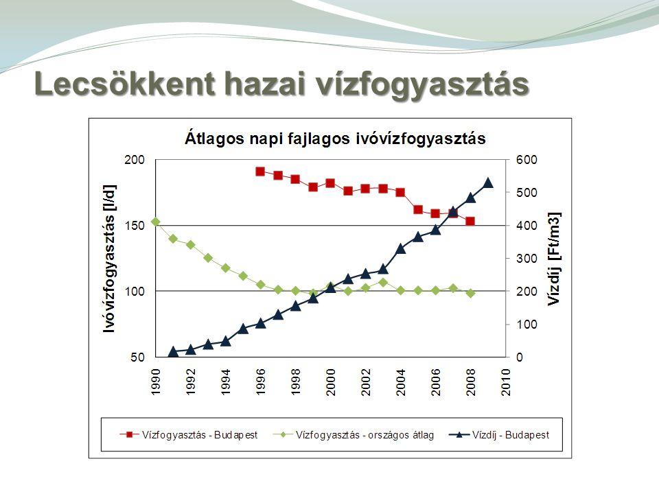 Lecsökkent hazai vízfogyasztás