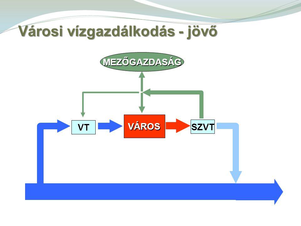 MEZŐGAZDASÁG SZVT VÁROS VT Városi vízgazdálkodás - jövő