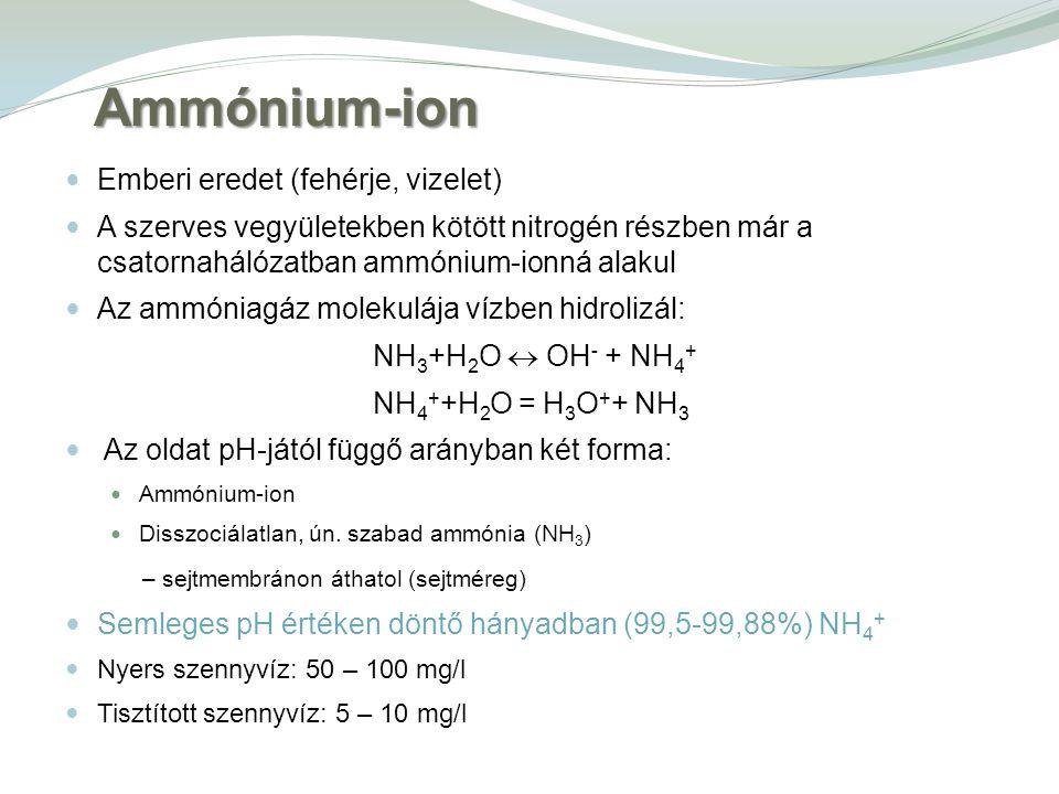 Emberi eredet (fehérje, vizelet) A szerves vegyületekben kötött nitrogén részben már a csatornahálózatban ammónium-ionná alakul Az ammóniagáz molekulája vízben hidrolizál: NH 3 +H 2 O  OH - + NH 4 + NH 4 + +H 2 O = H 3 O + + NH 3 Az oldat pH-jától függő arányban két forma: Ammónium-ion Disszociálatlan, ún.