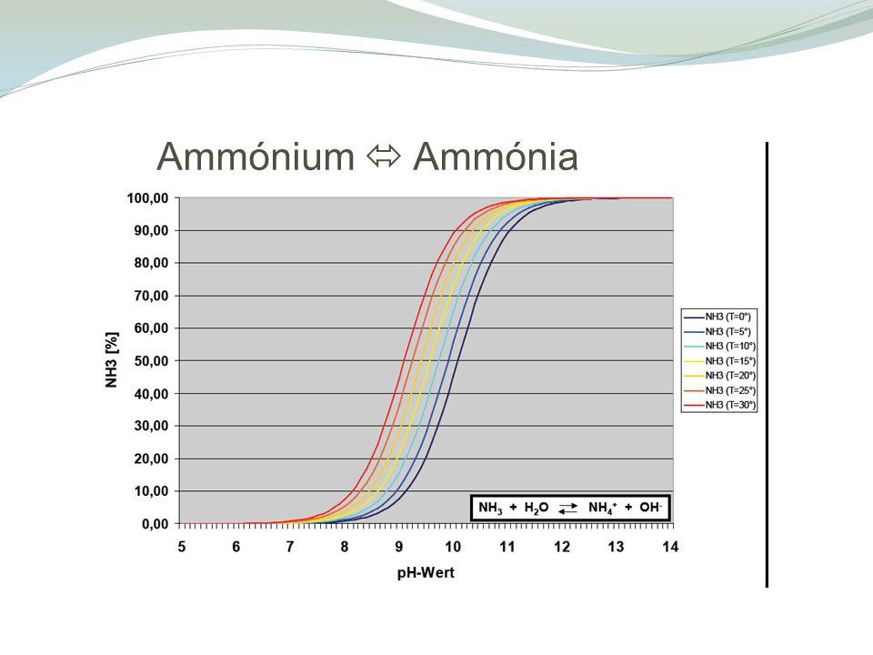 Ammónium  Ammónia