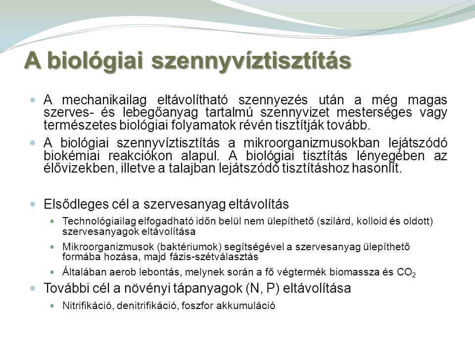 A biológiai szennyvíztisztítás A mechanikailag eltávolítható szennyezés után a még magas szerves- és lebegőanyag tartalmú szennyvizet mesterséges vagy