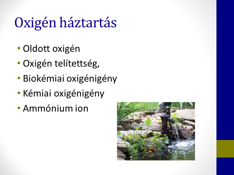 Oxigén háztartás Oldott oxigén Oxigén telítettség, Biokémiai oxigénigény Kémiai oxigénigény Ammónium ion