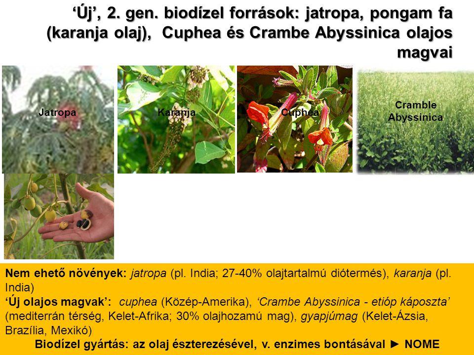 'Új', 2. gen. biodízel források: jatropa, pongam fa (karanja olaj), Cuphea és Crambe Abyssinica olajos magvai Nem ehető növények: jatropa (pl. India;