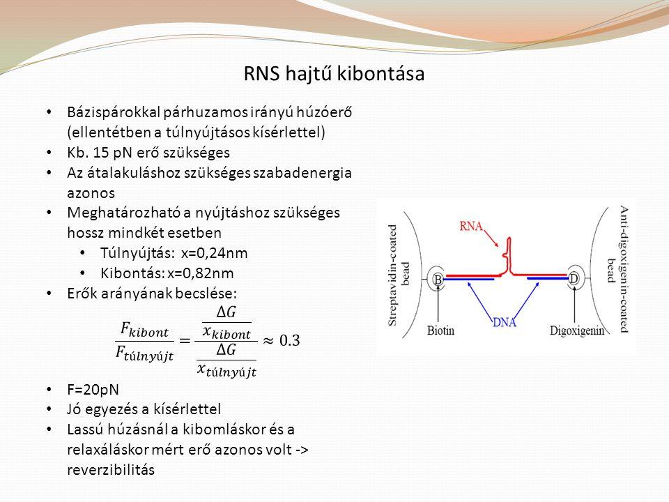 RNS hajtű kibontása