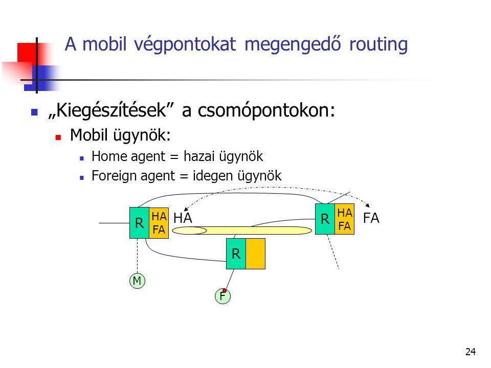 23 Autonóm rendszerek Egy autonóm rendszer a többi autonóm rendszer számára jelzi az általa képviselt csoporto(ka)t Az egész csoport egyetlen bejegyzé