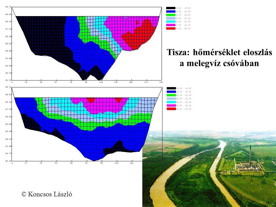 Tisza: hőmérséklet eloszlás a melegvíz csóvában © Koncsos László