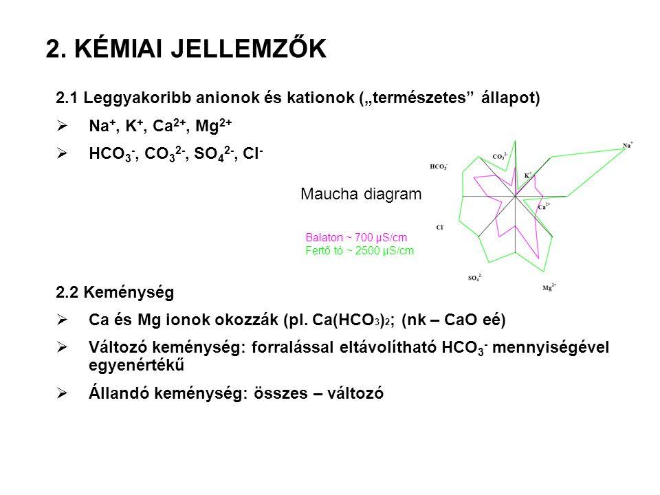 """2.1 Leggyakoribb anionok és kationok (""""természetes"""" állapot)  Na +, K +, Ca 2+, Mg 2+  HCO 3 -, CO 3 2-, SO 4 2-, Cl - 2.2 Keménység  Ca és Mg iono"""